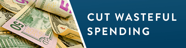 Cut Wasteful Spending